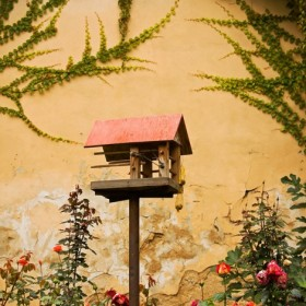 Bird House, an art piece by Anait Boyajyan